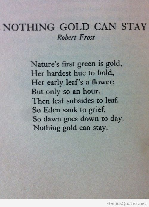 poetry robert frost essay